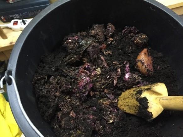 Valmista bokashia voi sekoittaa vanhaan kompostiin.